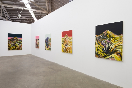 Andy Woll, Sticks and Stones​, installation view, 2016