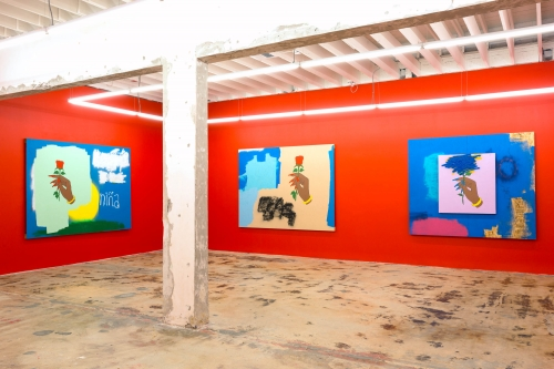 I Was Going to Call It Your Name But You Wouldn't Let Me, installation view at Nina Johnson Gallery, 2016