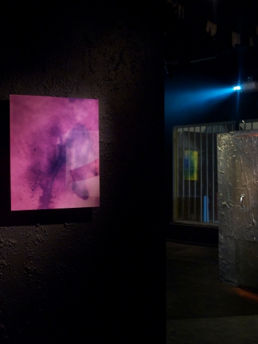 """""""Group Shower,"""" Installation view, 2012"""