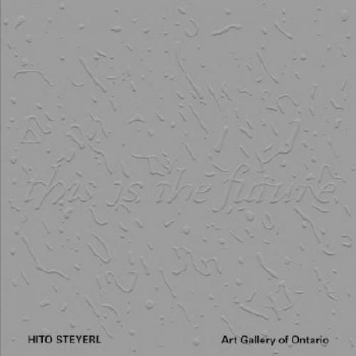 Hito Steyerl