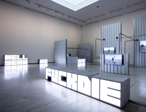 HITO STEYERL AT THE ART GALLERY OF ONTARIO, TORONTO