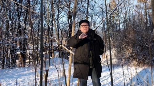 Trær, kunst og politikk