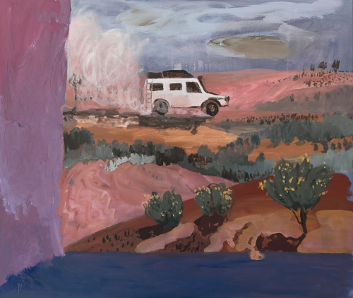Emily Imeson Acacia Bloom and Troopy Dust 2019 Acrylic on canvas 95 x 115cm artwork