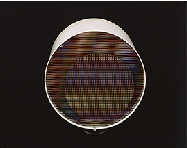 Carlos Cruz-Diez, among others