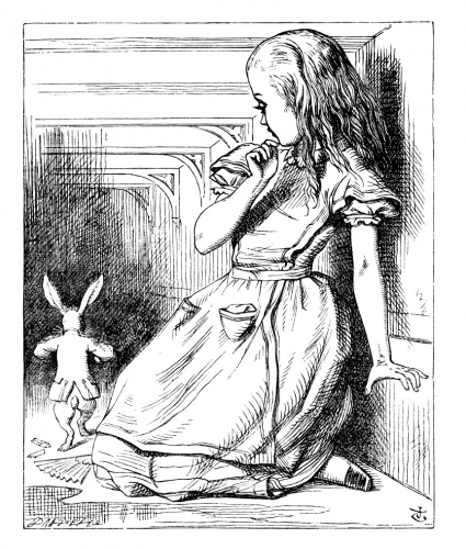 PR 13 (By physicalizing the rabbit)