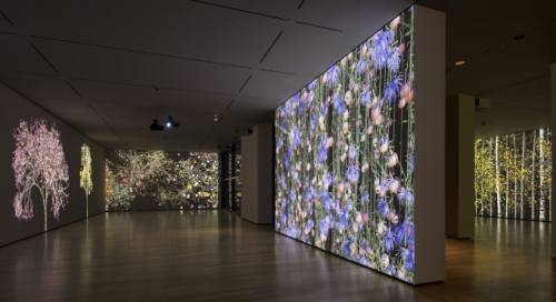 'Jennifer Steinkamp: Blind Eye' Review: Exploring the Digital Landscape