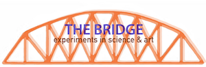 Shanthi Chandrasekar Selected for SciArt Initiative's 2020 Bridge Science Art Residency