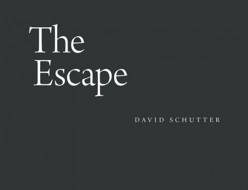 David Schutter