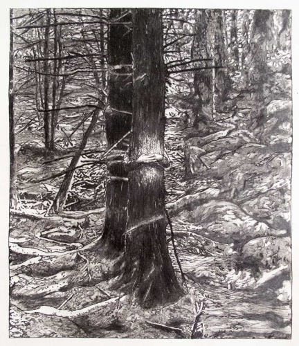 Love Lundell, dry point