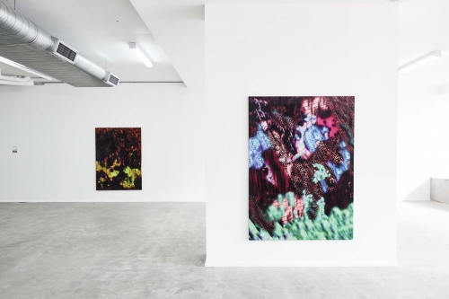 "Mousse Magazine: Ry David Bradley ""Overworld"" at COMA Gallery, Rushcutters Bay"