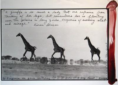 Giraffes in Mirage on the Taru Desert, Kenya, 1960 (later imp)