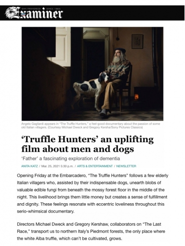 'Truffle Hunters' an uplifting film about men and dogs