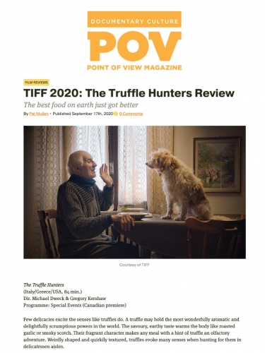 TIFF 2020: The Truffle Hunters Review