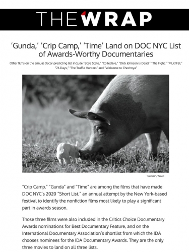 'Gunda,' 'Crip Camp,' 'Time' Land on DOC NYC List of Awards-Worthy Documentaries