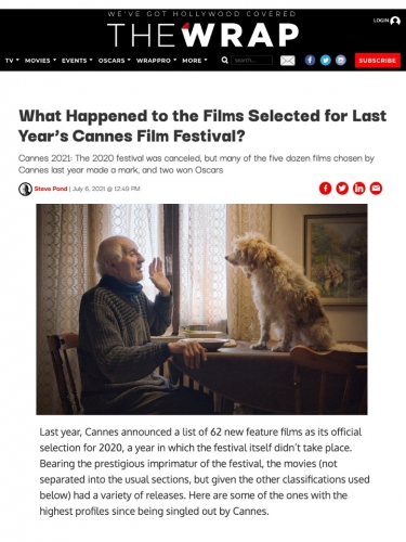 What Happened to the Films Selected for Last Year's Cannes Film Festival?
