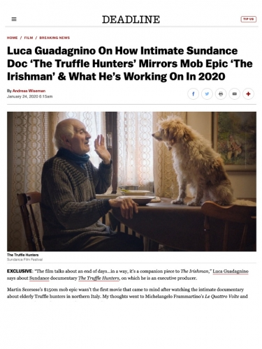 Luca Guadagnino On How Intimate Sundance Doc 'The Truffle Hunters' Mirrors Mob Epic 'The Irishman' & What He's Working On In 2020