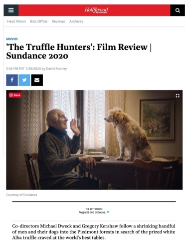 'The Truffle Hunters': Film Review | Sundance 2020