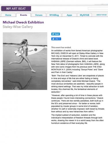 Michael Dweck Exhibition