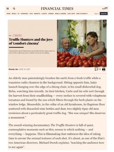 Truffle Hunters and the joys of 'comfort cinema'