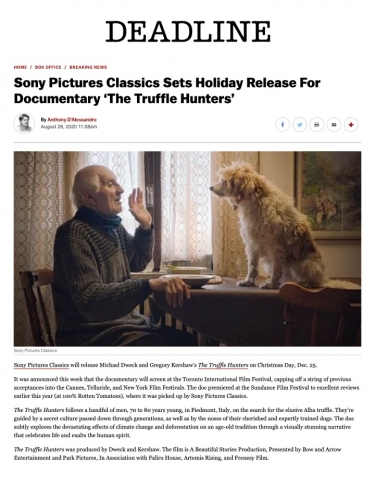Sony Pictures Classics Sets Holiday Release For Documentary 'The Truffle Hunters'