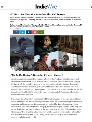 40 Must-See New Movies to See This Fall Season