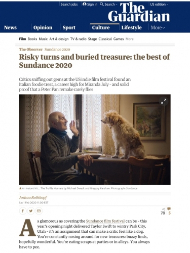 Risky turns and buried treasure: the best of Sundance 2020