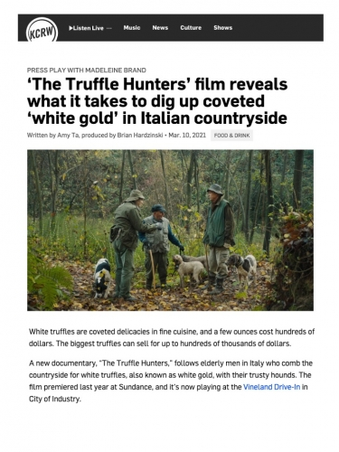 'The Truffle Hunters' film reveals what it takes to dig up coveted 'white gold' in Italian countryside