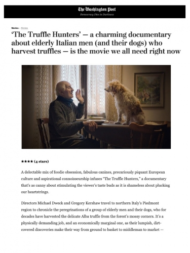 'The Truffle Hunters' — a charming documentary about elderly Italian men (and their dogs) who harvest truffles — is the movie we all need right now