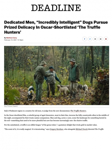 "Dedicated Men, ""Incredibly Intelligent"" Dogs Pursue Prized Delicacy In Oscar-Shortlisted 'The Truffle Hunters'"