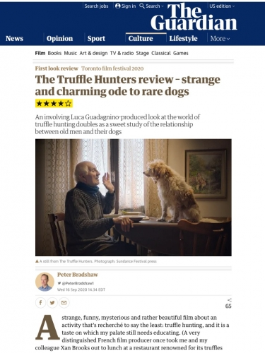 The Truffle Hunters review – strange and charming ode to rare dogs ****