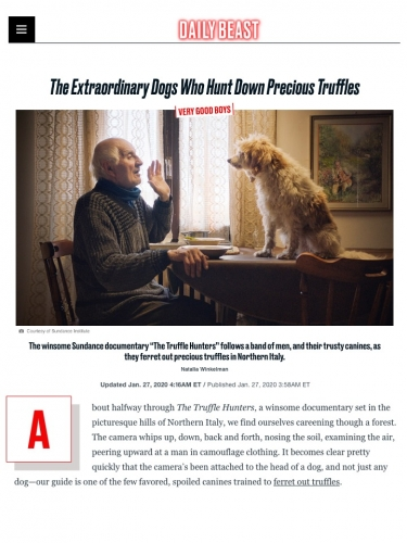 The Extraordinary Dogs Who Hunt Down Precious Truffles