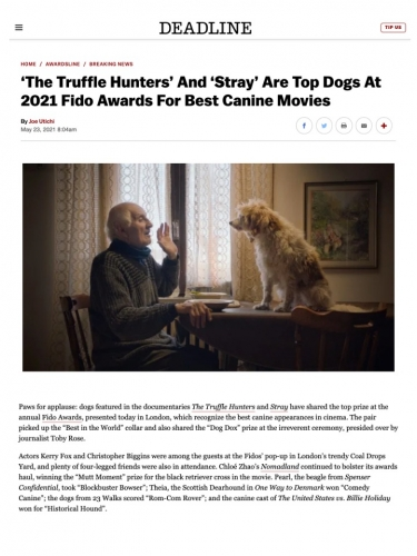 'The Truffle Hunters' And 'Stray' Are Top Dogs At 2021 Fido Awards For Best Canine Movies