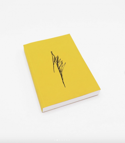 Hassla Books donating 100% of sales from Lindman's new book