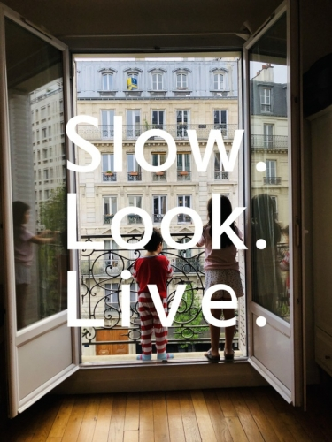talk: abraham cruzvillegas - slow. look. live