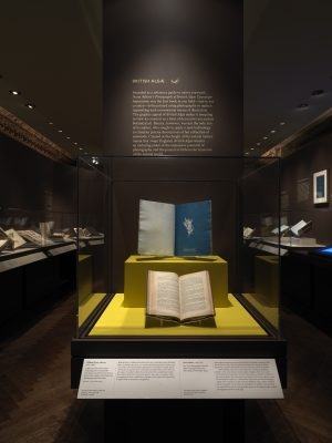 Anna Atkins New York Public Library Exhibition View