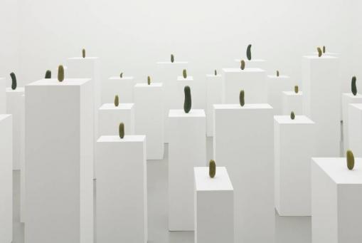 Erwin Wurm: The Discipline of Subjectivity