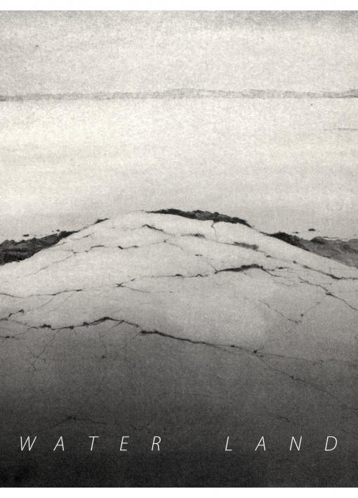 """Water Land"" | Errol Barron"