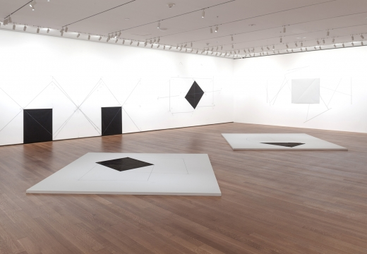Dorothea Rockburne: Drawing Which Makes Itself