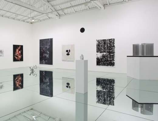 Black Swan: The Exhibition