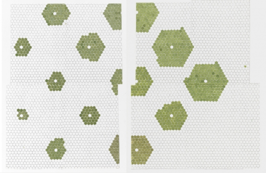 Julia Fish, First plan for floor [ floret ] — section three and six