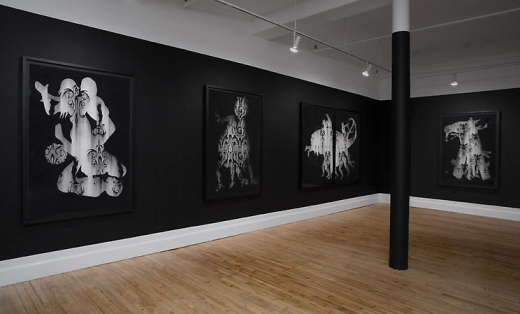 Alice Maher: Hypnerotomachia: Recent Drawings and Sculpture