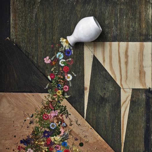 Abelardo Morell: Flowers for Lisa