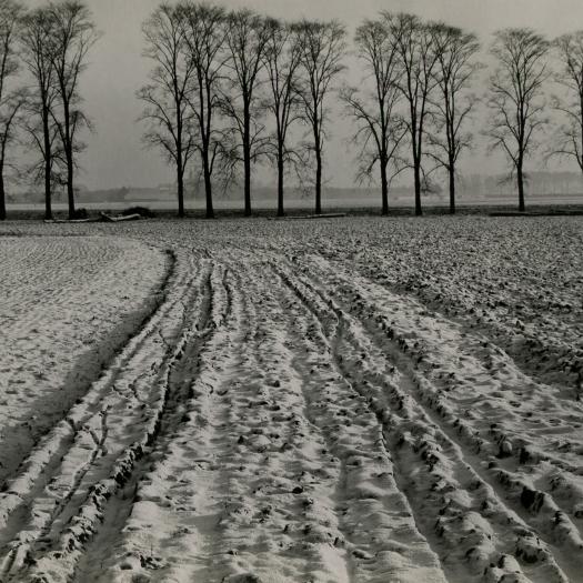 NEW VISION / European Photographs 1923-1955