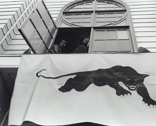Power to the People: The Black Panthers in Photographs by Stephen Shames and Graphics by Emory Douglas