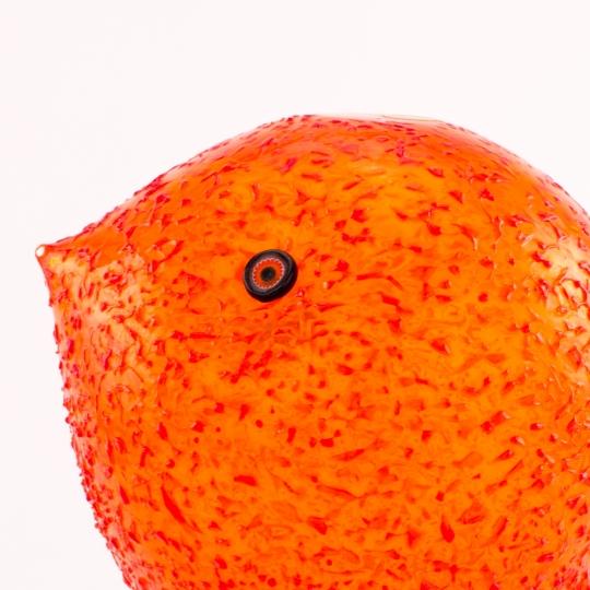 Orange Pulcino