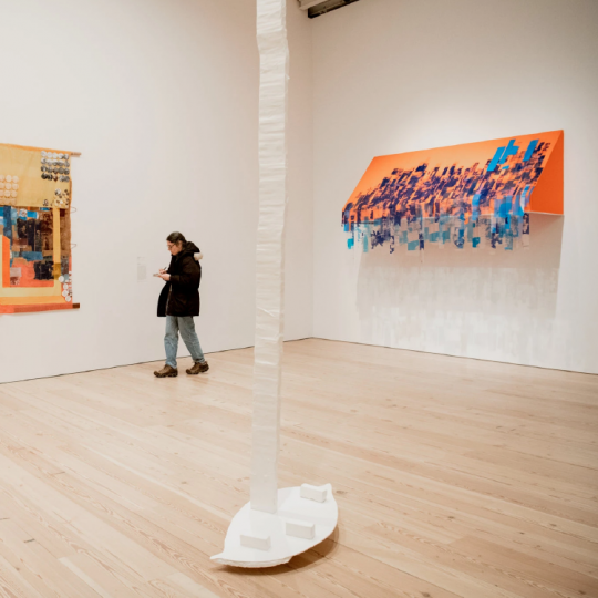 The Whitney Biennial: Young Art Cross‑ Stitched With Politics