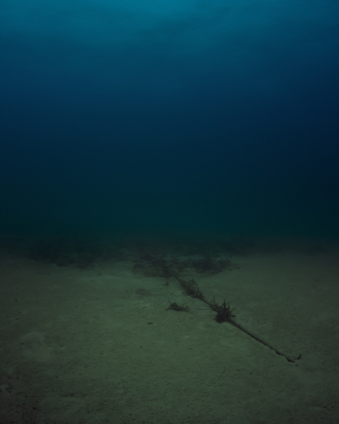 Trevor Paglen Bahamas Internet Cable System (BICS-1) NSA/GCHQ-Tapped Undersea Cable Atlantic Ocean, 2015 photograph