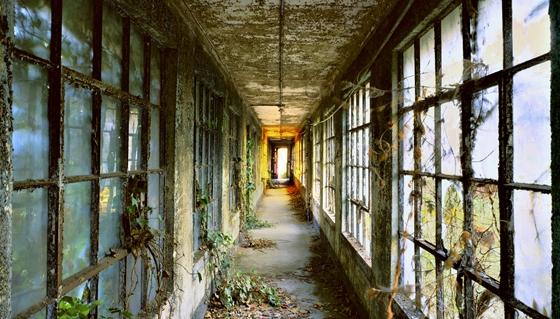 Ellis Island Portfolio