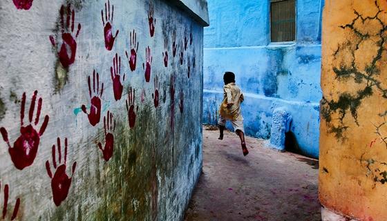 The India Portfolio