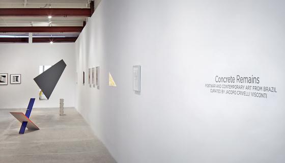 Concrete Remains: Postwar and Contemporary Art from Brazil